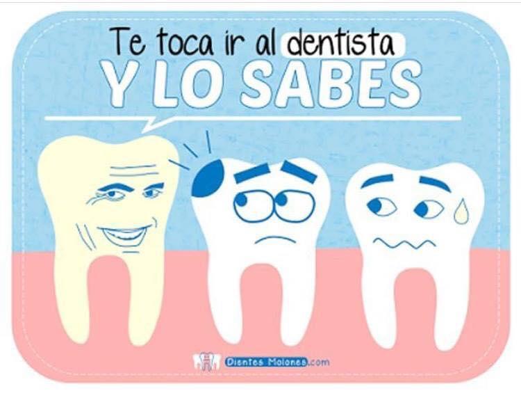 debes ir al dentista al menos dos veces al año
